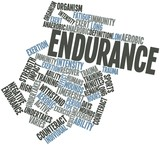 Word cloud for Endurance