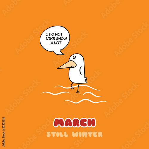 March Bird Adventure
