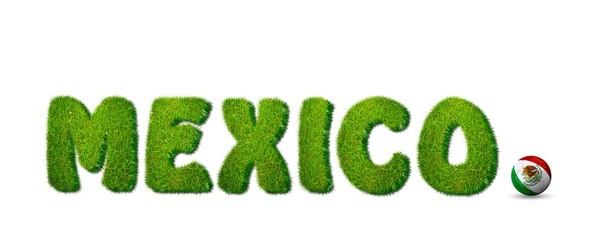 Selección mejicana de fútbol.