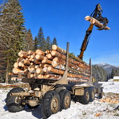 Preparation of wood and loading on transport