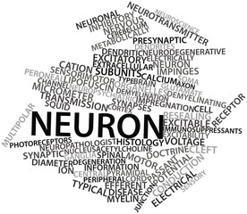 Word cloud for Neuron