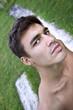 Nu, torse nu, homme, jeune, mâle, masculin, modèle