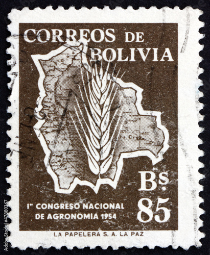 Postage stamp Bolivia 1954 Map of Bolivia