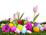 Fototapety Bunte Osterwiese mit Ostereiern und Frühlingsblumen