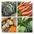 Légumes, marché, étal, frais, aliment, cuisine, végétarien