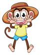 A monkey wearing a hat