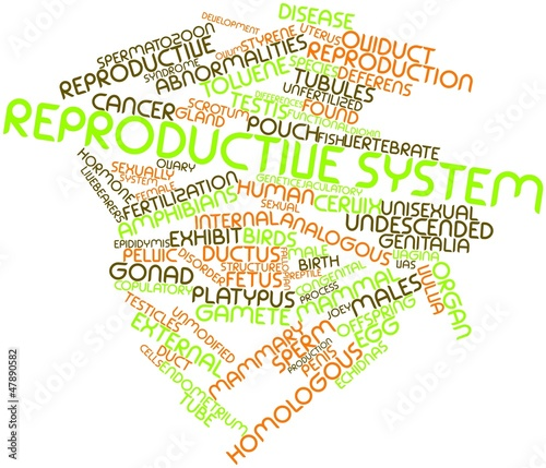 Word cloud for Reproductive system