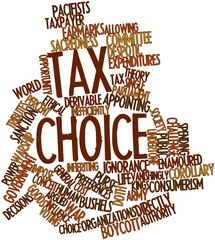 Word cloud for Tax choice