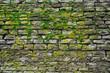 Fototapeten,moos,steine,grün,alt