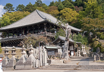 Old temple in Nara - Japan