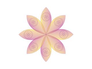 Spiral flower