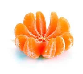 segments clementines