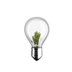 Glühlampe, Glühbirne, Energie, Öko