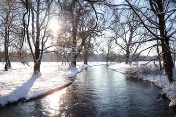 Зимний пейзаж: ручей в парке