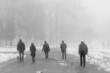 people walking in foggy landscape
