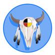 teschio bisonte vectro