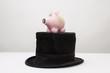 Glücksschwein auf Hut