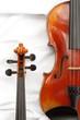 Zwei Geigen Detail 3