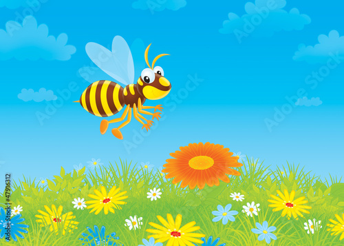 wasp flying over a meadow with wildflowers