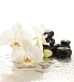 Spa stones and orchid flowers, isolated on white. - 47926163