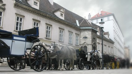 Horse-driven carriage stands at Hofburg palace near with