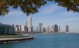 Shedd Aquarium And Chicago Skyline poster