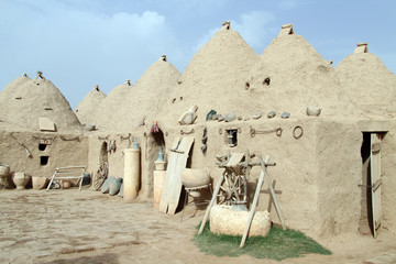 Houses in Harran