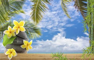 décor exotique vacances détente