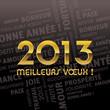 2013 meilleurs voeux !