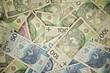 Polish Zloty Money