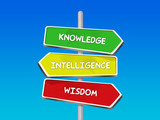 knowledge intelligence wisdom words on arrow signs poster