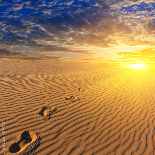evening sandy desert