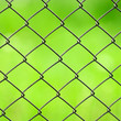 Wire Mesh Fence Close-Up on Green Background