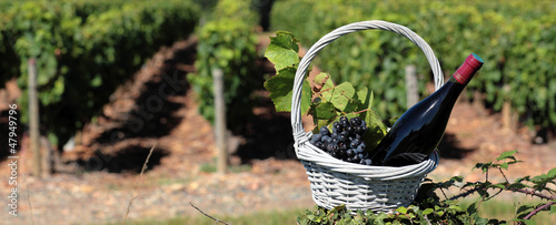 bottle of wine and grappes in basket