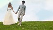 groom and bride go keeping for hands downwards on meadow,
