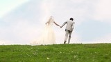 Newly-married couple moves keeping for hands upwards on meadow