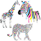 Animals vector set - giraffe, zebra, leopard - cmyk