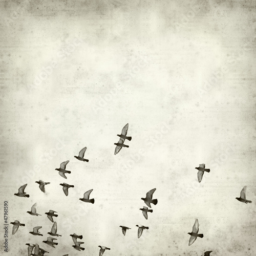 textured old paper background - 47961590