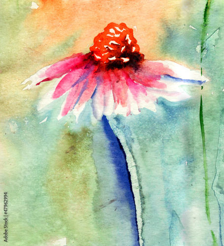 Watercolor illustration with beautiful flowers © Regina Jersova