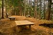 ハイキング道のベンチ