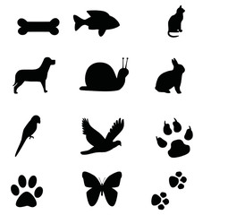 hayvanlar 1