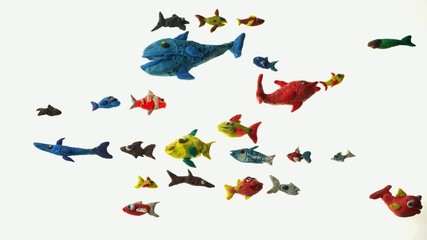 colorful tropical fish stop motion animation