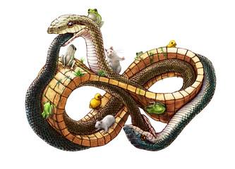 メビウスの輪の上のヘビ 白背景