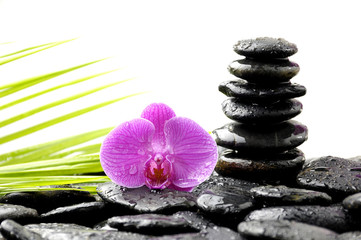 Spa Still life with tower stone and orchid and palm leaf