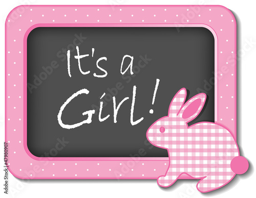 It's a Girl!  Baby Bunny Rabbit Bulletin Board Announcement