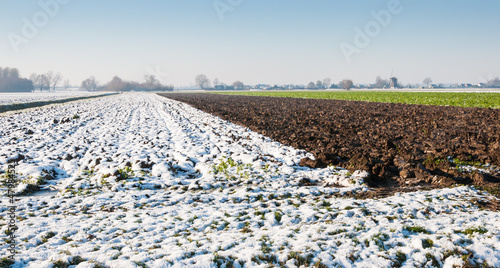 Dutch rural winter landscape