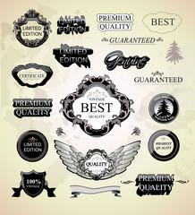 Calligraphic design elements and vintage frames
