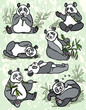 Set of cartoon panda