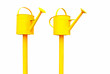 Yellow watering cans isolated