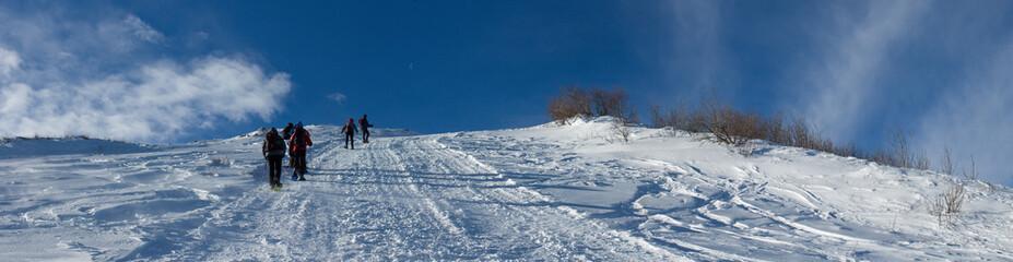 Panorama innevato delle alpi